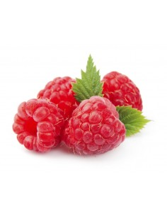 CONCENTRADO RASPBERRY ABACA 75CL