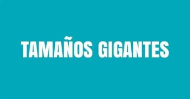 TAMAÑOS GIGANTES